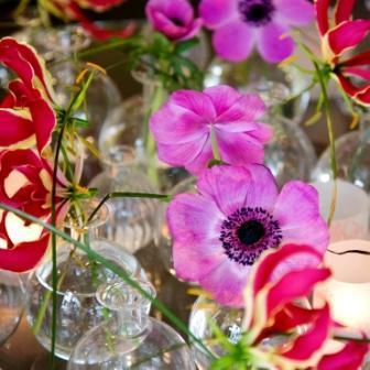 anemone og gloriosa