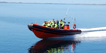  1 seloey kystservice RIB.JPG