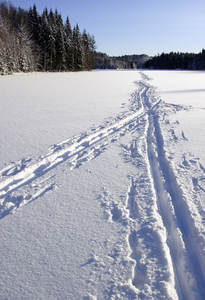 Skispor på Fløyta