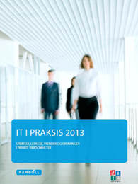 IT_i_praksis_2013_privat