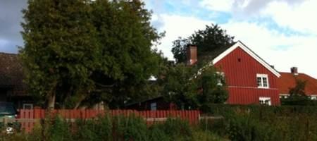 Anjushuset i Vestfold vår_sommer 2012_380x284