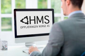 bs-businessman-computer-ingr