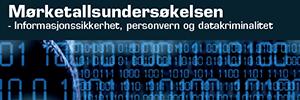 Mørketallsundersøkensen_2014
