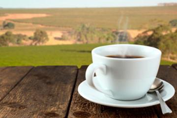 NR-kaffe-farmmod300x207