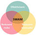 SWAM-kurs[1]