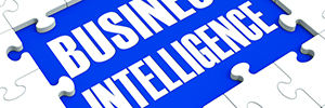 Business-Intelligence ingress