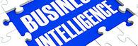 Business-Intelligence ingress[1]