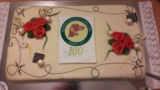 Kake 100 år_550x309