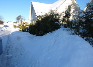snø 022[1]