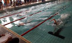 setermoensvømmeklubb_ingress