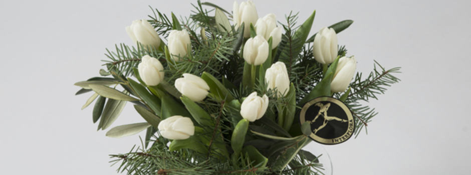 kvite tulip