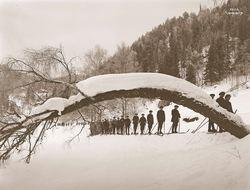Bildet er fra 1915 og viser elever fra Vålerengen skole på vei inn til Sarabråten. Foto: Anders Wilse, Norsk Folkemuseum.