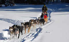 18_vinterferieaktiviteter_i_dyroy_ingress
