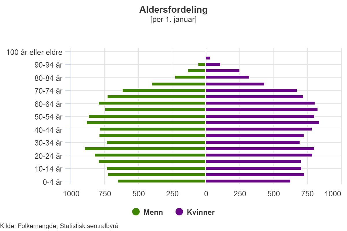 Aldersfordeling 2017.png