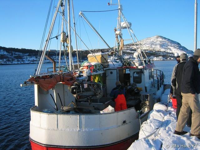 ill.foto; Salg av fisk ved kai