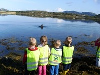 storfjellet, storvatnet og ytterhaugen aud. 2008  355