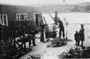 Torrfiskpressing Aarsatherbruket i Kjollefjord ar  1935