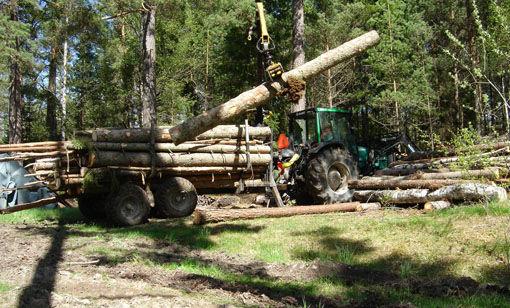 skogsbruk1forside