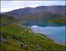 Hasfjord