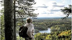 Sverre M. Fjelstad skuer utover en fremtidig nasjonalpark. Foto: Cathrine Søberg