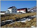 Vår på Sørøya/Spring at Sørøya