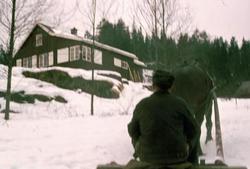 Magnus Dammen med hest og slede på Bøvelstad i 1974.
