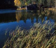 Søndre Kytetjern i Østmarka naturreservat