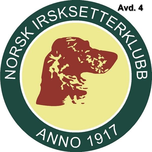 NISK Logo Avd 4