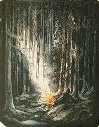 Bilde Inn på finnskogen_200x255