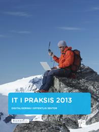 IT i praksis_2013_cover