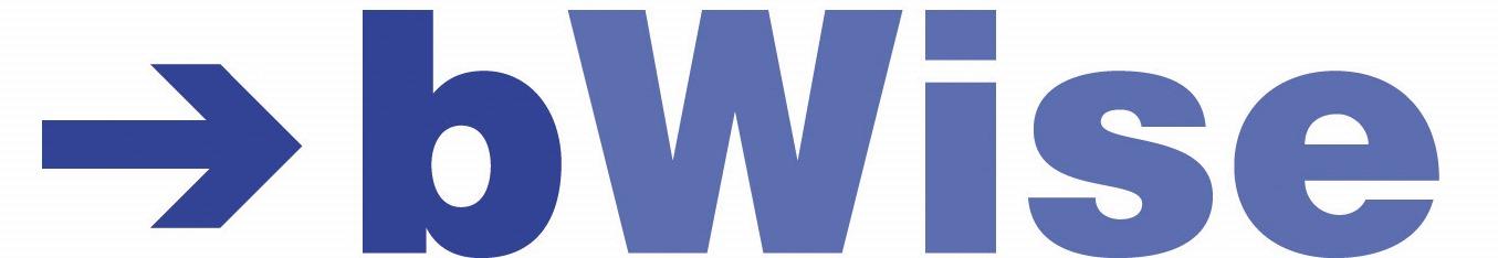 bwise-logo-2013.jpg