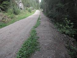 Utvidelse av lysløypa mellom Grønnmo og Skullerud