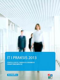 IT_i_praksis_2013_privat