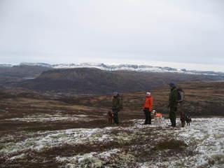 Hardangervidda i begynnende vinterskrud_320x240.jpg