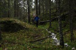 Ned på mosegrodde lier fra Bjørntjernåsen.