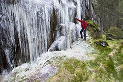 Spinneren med Svartdalen er en av eventyrskogene som ble vernet i statsråd i 2013. Foto: Espen Bratlie