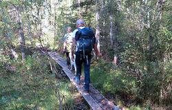 Bjarne Røsjø. Turfolk liker ikke tanken på at de kan bli fotografert av viltkameraer i skogen.