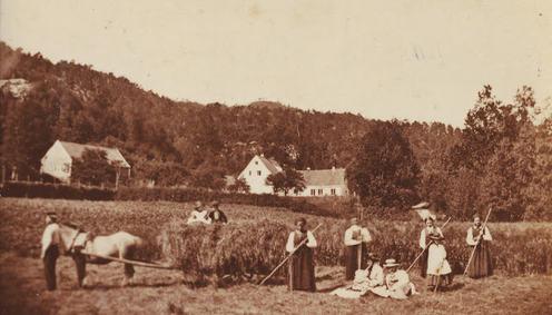 Høyonn på Nymark