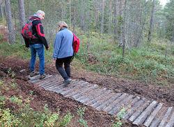 Denne kloppa ble lagt for å bringe terrengsyklene over ei lita myr, men er også fin å gå på for Øyvind Rørslett og Helga Gunnarsdóttir. Foto: Bjarne Røsjø