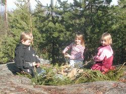 Bjørnar Thøgersen. Rælingsåsen - viktig hundremeterskog og rekreasjonsområde.
