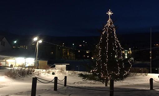 juletrekjollefjord