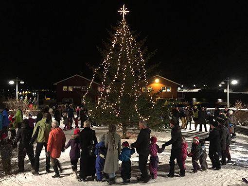 juletrekjollefjordbig