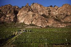Nahe_Weinregionen_(9)