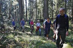 Sigmund Hågvar er professor emeritus i natur- og miljøvern og en skattet turguide. Her er han og en gruppe Østmarka-venner underveis til Tonekollen i september 2014. Foto: Bjarne Røsjø.
