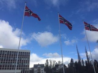 Flagg ved rådhuset