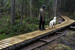 Utskifting av tidligere klopper med nye «plankefortau» på Slettfjell i 2012/2013: Krever tillatelse etter markaloven. Foto: Bjarne Røsjø.