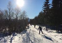 skidag 07.03.17. Skigåere