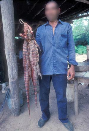 En mann med smuglede øgler. Foto: EIA.