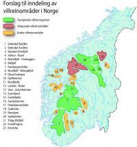 Norgeskart, inndeling av viltrein