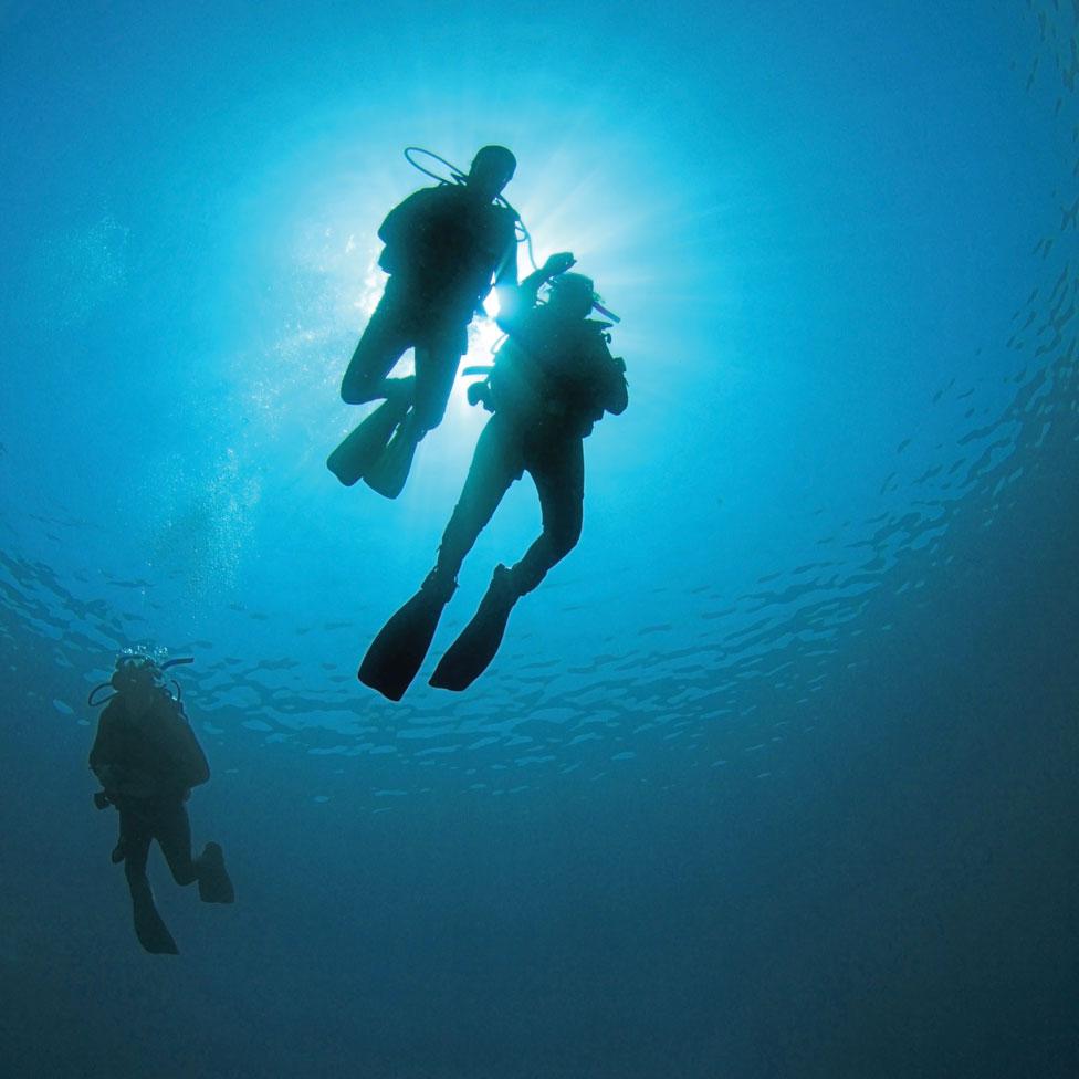 Illustrasjon, dykkere under vann